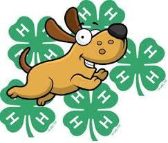 dog with 4-H emblem