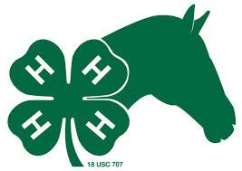 horse and 4-H emblem